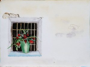Fenster vom Hof